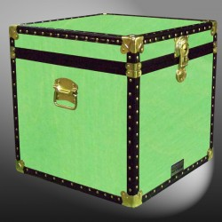 20-160 WOOD WASH LIME Cube Storage Trunk with ABS Trim