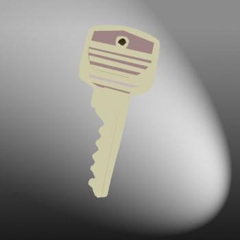 [60]40mm Padlock Master key