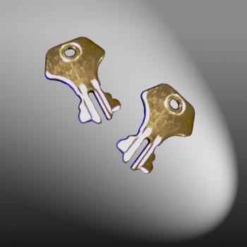 2 Spare Trunk Lock Keys
